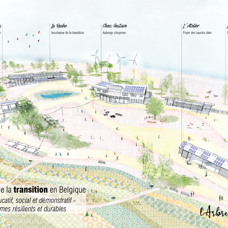 The Growing Tree: Incubator of the transition in Belgium